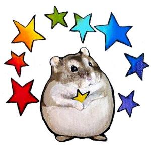 rainbow star hamster