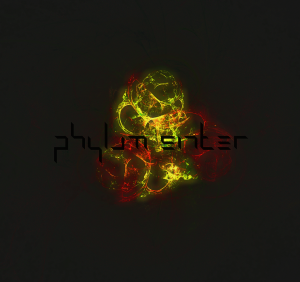 phylum sinter - -in_progress 2015 - cover